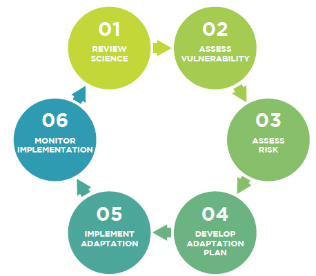 process chart showing six steps of assessment